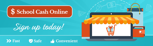 Cash Online.png